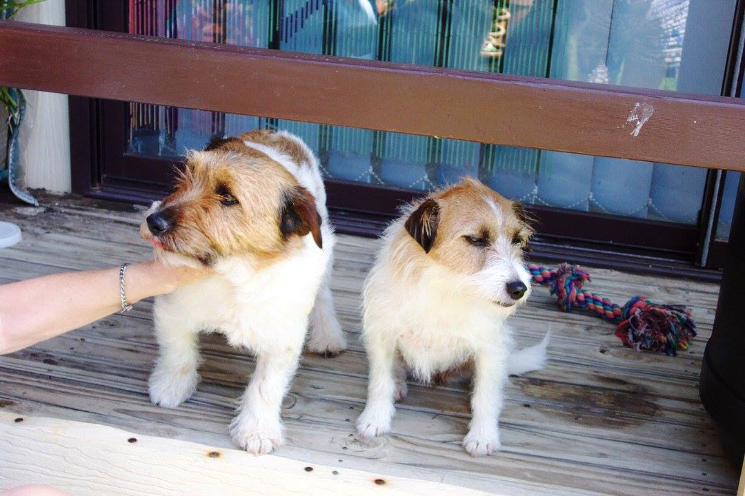 Bonnie (R) with Percy