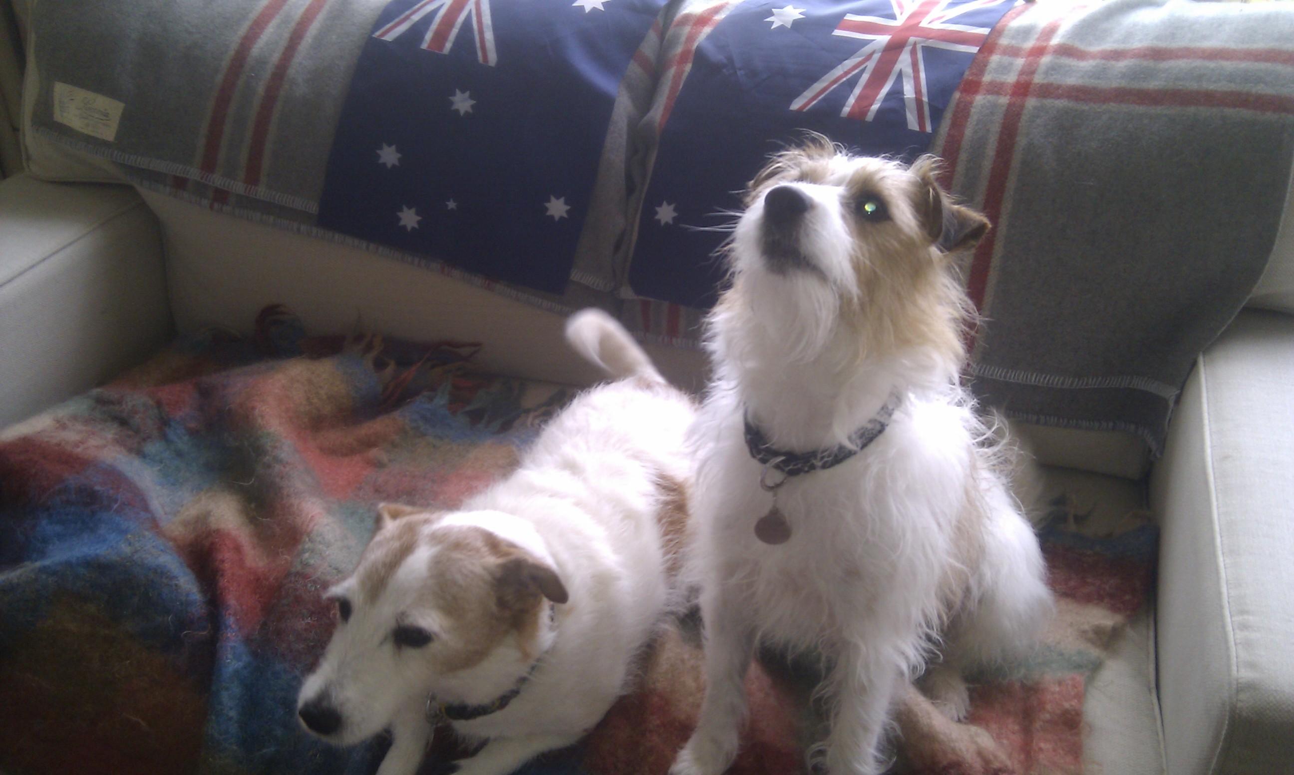Toby & sister Alice