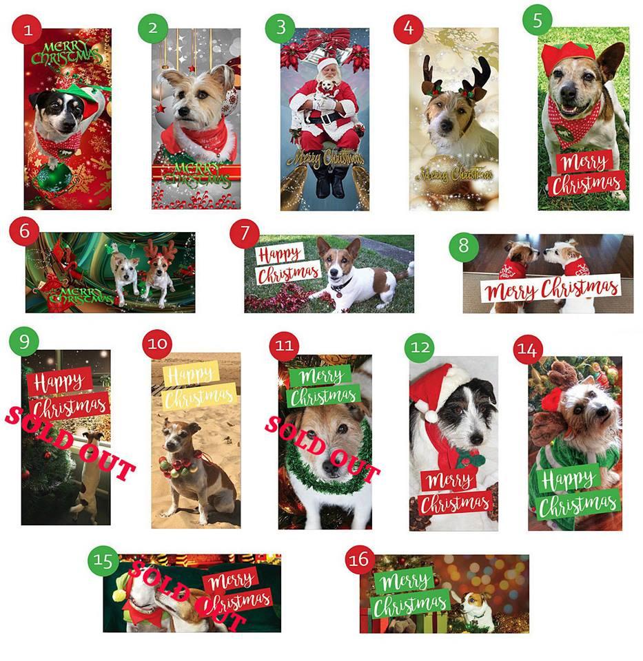 Christmas Card Selection 2017