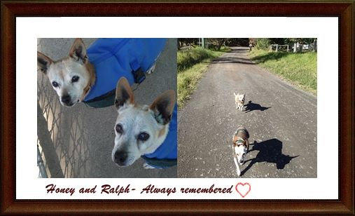 Honey - she and Ralph together again